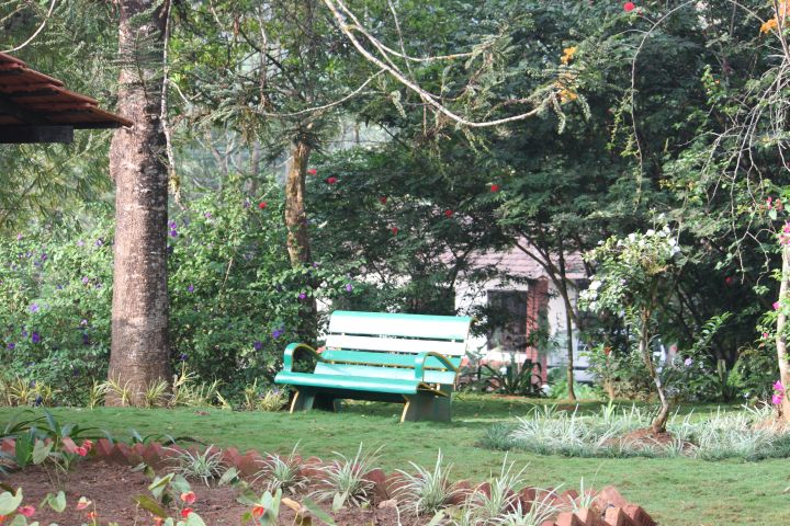 Plantation - Sit back and enjoy the nature